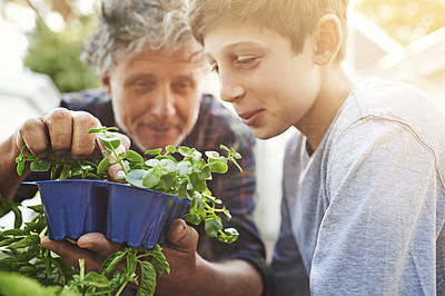 Teaching his grandson a thing or two about gardening