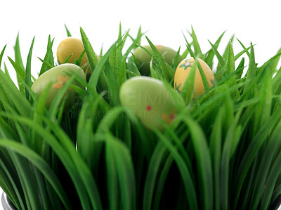 Buy stock photo Colorful easter eggs in the grass against a white background