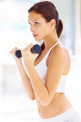Buy stock photo Portrait of fit young woman exercing with free wights - Indoors