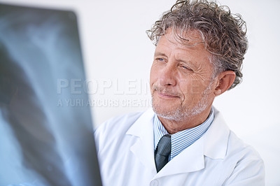 Buy stock photo Shot of a mature doctor examining an x ray