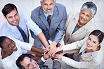 Business diversity and success