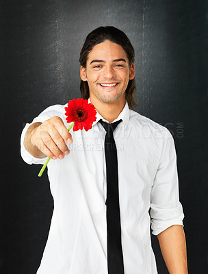 Buy stock photo Attractive man holding out daisy against gray background