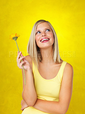 Buy stock photo Happy woman holding flower and looking up against yellow background