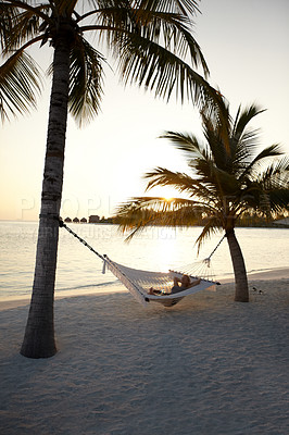 Buy stock photo Portrait of a young woman lying in a hammock between coconut trees on a tropical beach