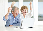 Celebration - Excited mature couple with raised hands
