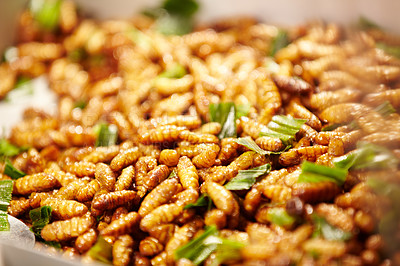 Buy stock photo Fried worm larvae at a market in Thailand