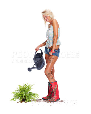 Buy stock photo Sexy young blond babe watering a plant isolated against white