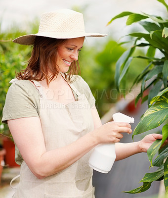 Buy stock photo Pretty young woman wearing hat watering plants, outdoors