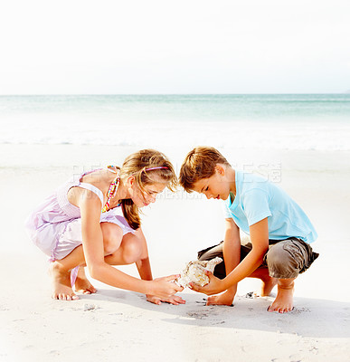 Buy stock photo Beach vacation - Brother and sister playing with a conch shell while at the sea shore