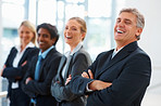 Team of confident business colleagues in a line, laughing