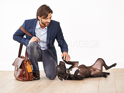 Buy stock photo A handsome businessman greeting his playful dog with a belly rub