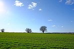 A photo of countryside in early spring - Denmark