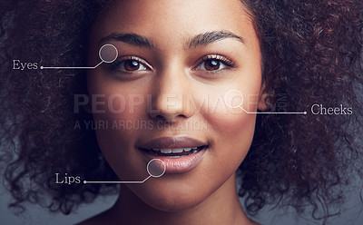 Buy stock photo Conceptual studio portrait of an attractive young woman with parts of her face labeled