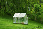 `Greenhouse in the garden