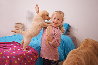 Buy stock photo A cropped shot of a little girl playing with her puppy in her bedroom