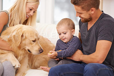 Buy stock photo Shot of a small family sitting together with their dog
