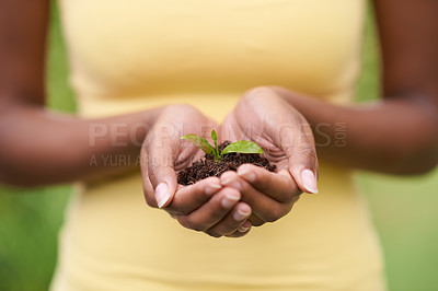 Buy stock photo Closeup shot of a woman holding a growing plant