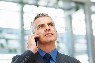Buy stock photo Closeup of mature business man using mobile phone