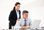 Mature business executives using laptop together