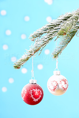 Buy stock photo Two christmas tree decorations hanging from a tree branch against a blue background