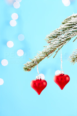 Buy stock photo Heart-shaped Christmas decorations hanging from a tree branch, isolated on blue with scattered light effect - copyspace