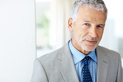 Buy stock photo Portrait of a businessman standing indoors