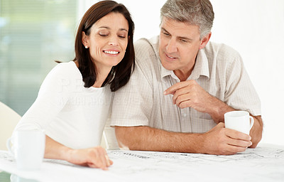 Buy stock photo Portrait of a happy mature couple looking over paperwork