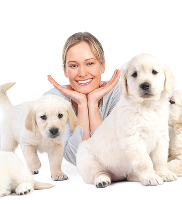 Buy stock photo Cute puppies and young hot female model - A pretty young woman with her pet dogs on isolated white.