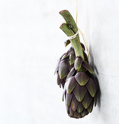 Buy stock photo Portrait of two artichokes in a simple and minimalistic fashion