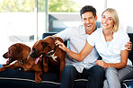 Smiling young couple sitting on sofa with their dogs