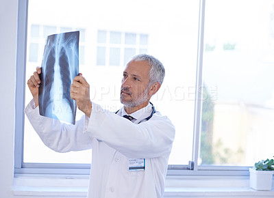 Buy stock photo Shot of a doctor looking at an x-ray