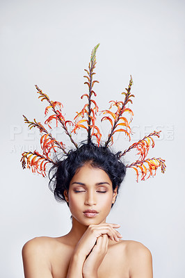 Buy stock photo Studio shot of a beautiful young woman with colorful branches in her hair