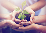 We hold the future of the planet in our hands...