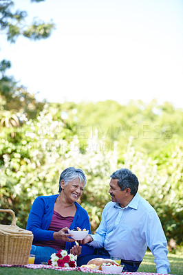 Buy stock photo Shot of a loving senior couple enjoying a picnic together outdoors