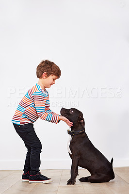 Buy stock photo Shot of a cute little boy playing with his dog
