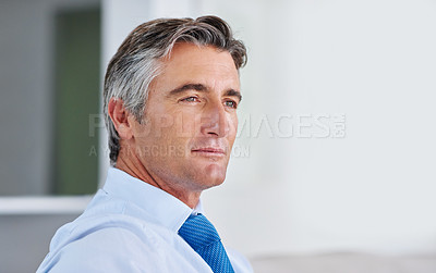 Buy stock photo Shot of a mature businessman in his home