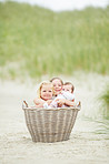 Basketful of joy for their parents