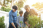 They're a family with green thumbs
