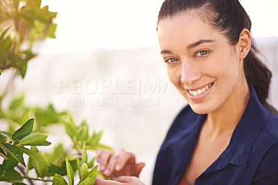 Buy stock photo Portrait of a young woman inspecting the leaves on her tree