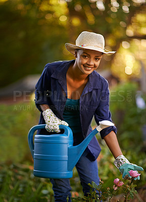 Buy stock photo Shot of a young woman watering her garden