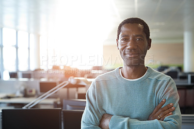 Buy stock photo Portrait of a casually dressed man standing in an office