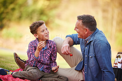Buy stock photo Shot of a father and son talking together while having a picnic in a park