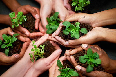 Buy stock photo Shot of a group of people each holding a plant growing in soil