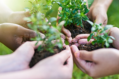 Buy stock photo Shot of four people each holding a plant growing in soil