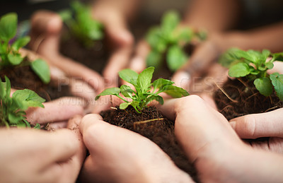 Buy stock photo Cropped shot of a group of people each holding a plant growing in soil together