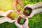 Together we can grow a greener tomorrow