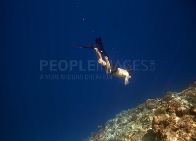 Buy stock photo Portrait of a cool young guy moving on under sea - Seaworld