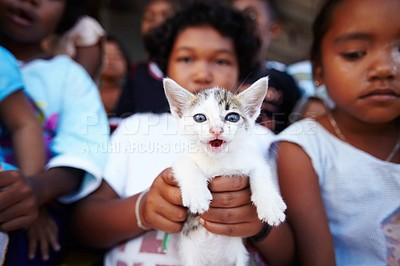 Buy stock photo A kitten being held up by a little Thai girl while standing in a group