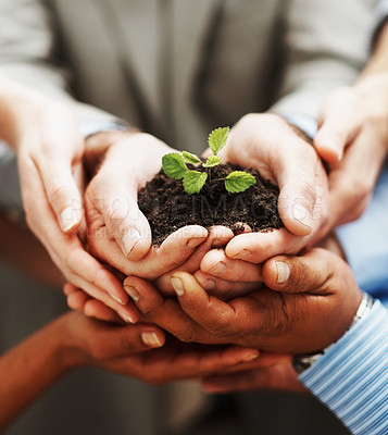 Buy stock photo Business growth - Closeup of hands holding green plant indicating teamwork