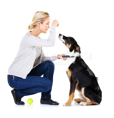 Buy stock photo Studio shot of a young woman with her dog isolated on white